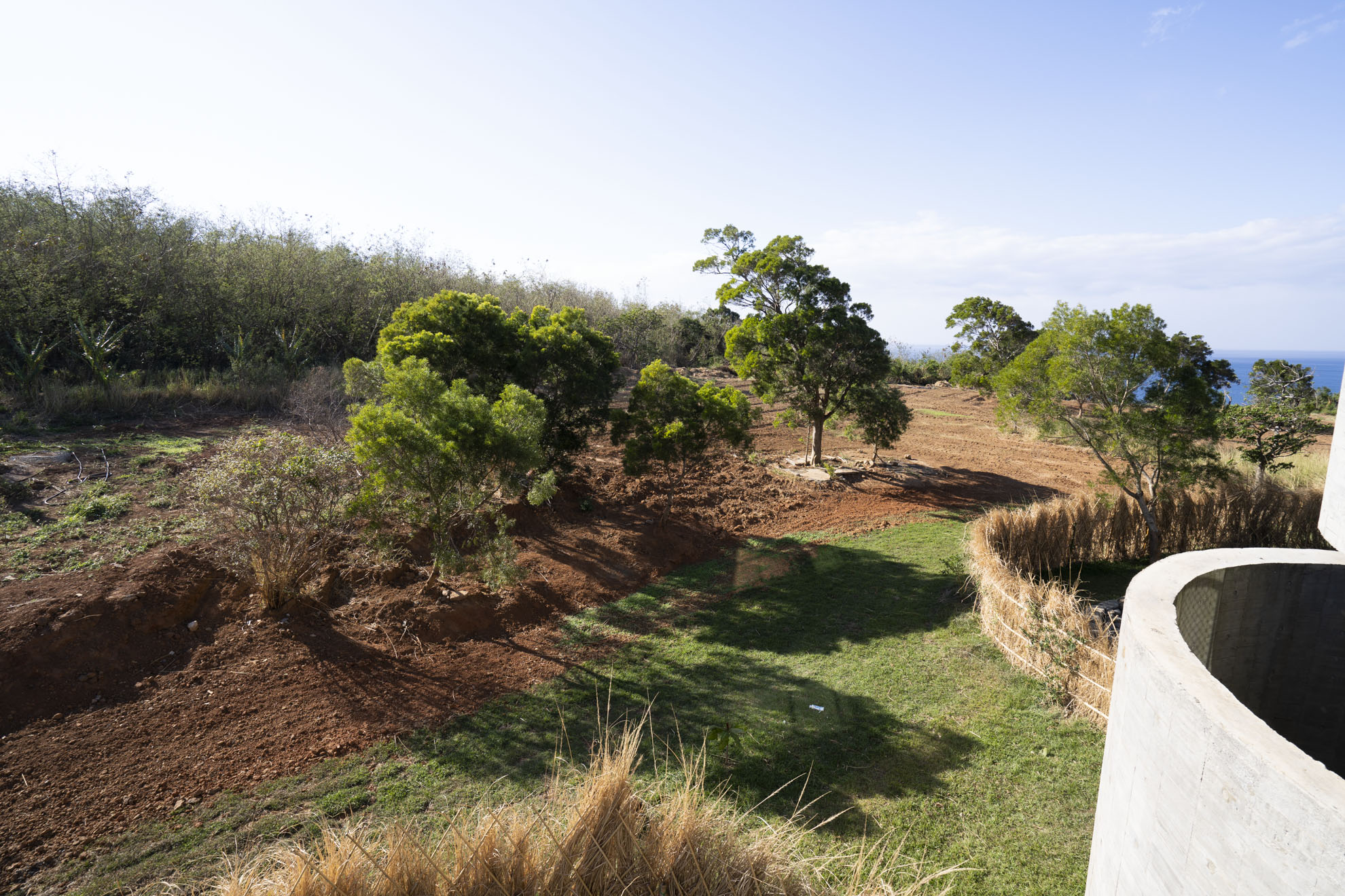 綠境陽台景色